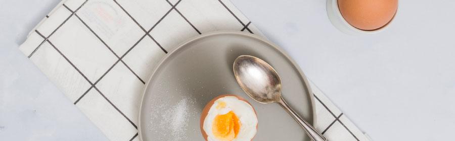 vakantietips proteine dieet eiwitdieet